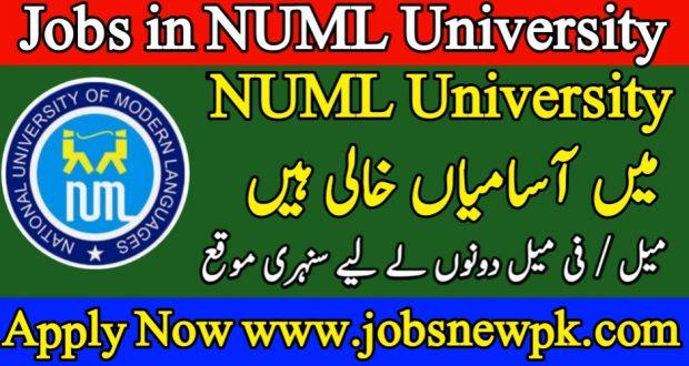 Latest Jobs in NUML University