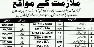Latest NTF Jobs all over Pakistan-Apply Through NTF-National Testing Facility-