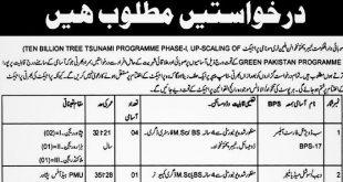 Billion Tree Project Jobs 2020 Peshawar-KPK