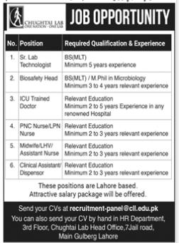 Daily Jang Jobs