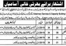 Livestock Jobs 2021 in Punjab Pakistan 130 + Vacancies in Livestock & Dairy Development Department