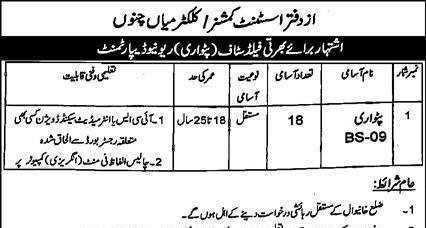 Government Job Vacancies
