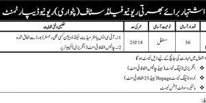 New Job in Punjab