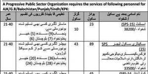 Govt Job Pak