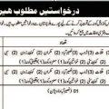Job in Quetta