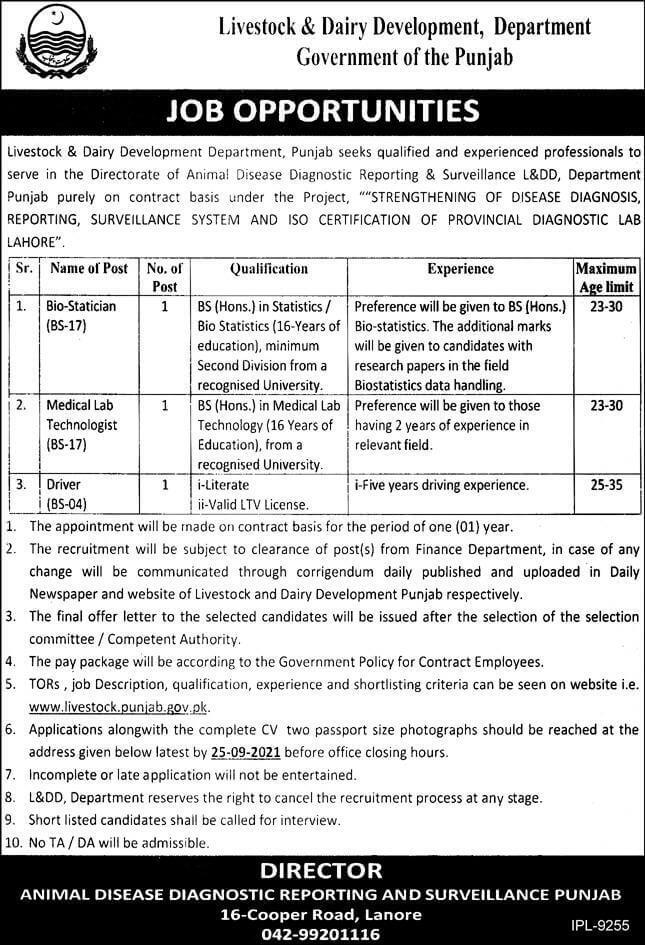 New Vacancy in Punjab 2021